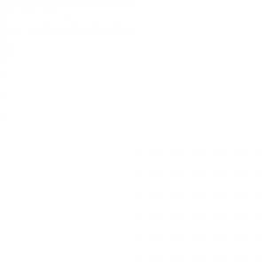"""Набор """"Жидкое лезвие"""" - экспресс-размягчитель 170 мл и терка абразивная педикюрная """"LIGHT"""""""