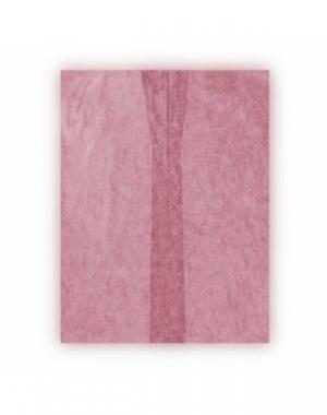 Халат-кимоно без рукавов IGRObeauty, SMS, бордовый, 25 г/м2, 10 шт